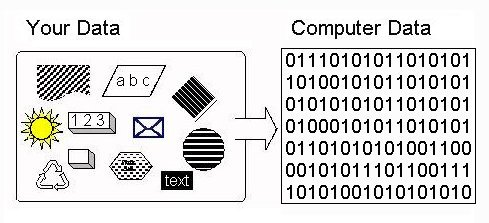 Data In The Computer